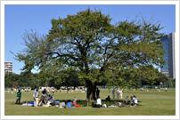 中央公園(旧中島飛行機武蔵製作所)