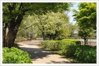 グリーンパーク遊歩道
