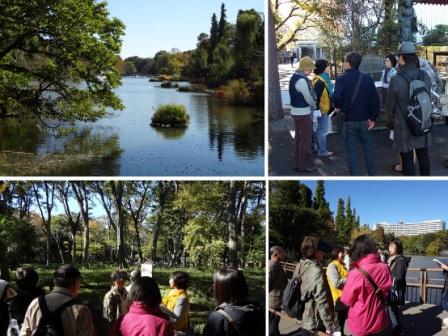 井の頭公園と吉祥寺散策コース